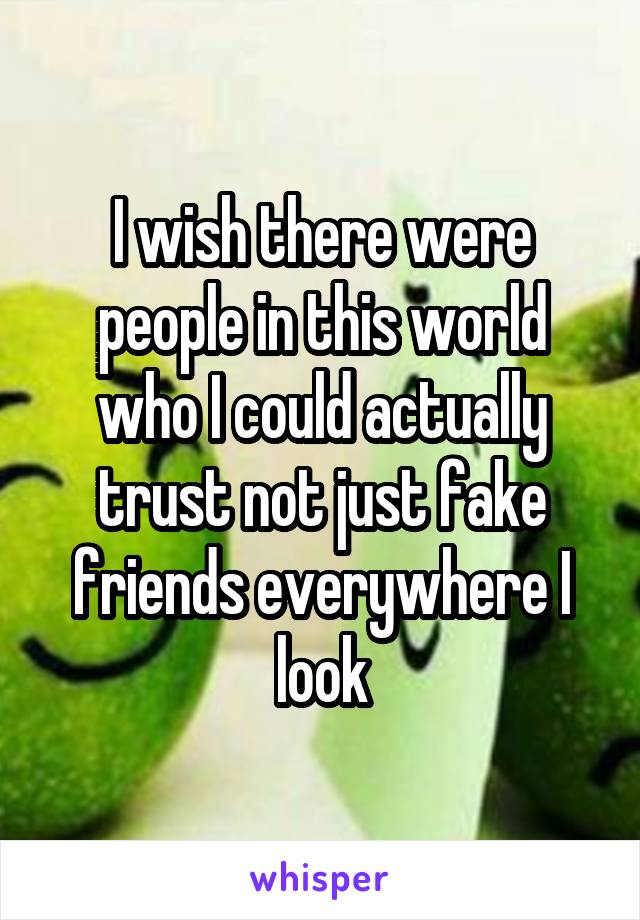 I wish there were people in this world who I could actually trust not just fake friends everywhere I look