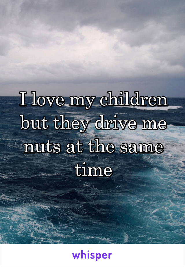 I love my children but they drive me nuts at the same time