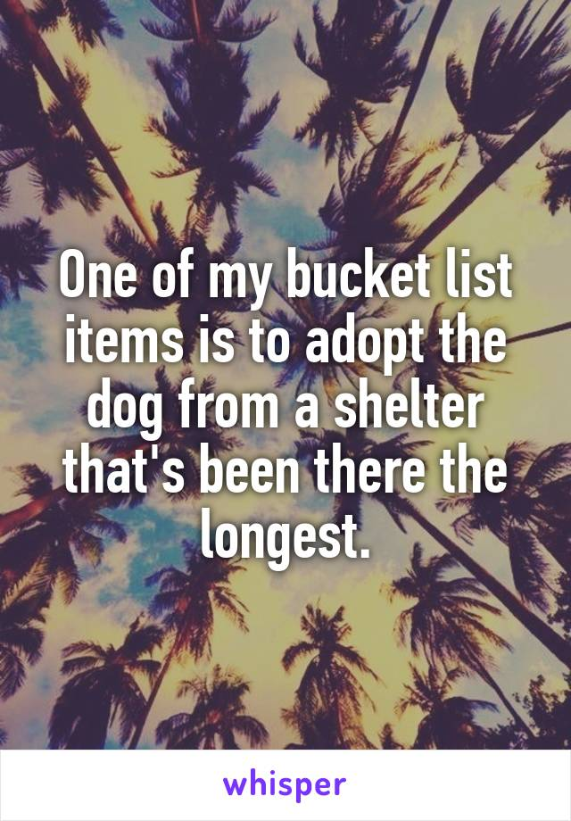 One of my bucket list items is to adopt the dog from a shelter that's been there the longest.