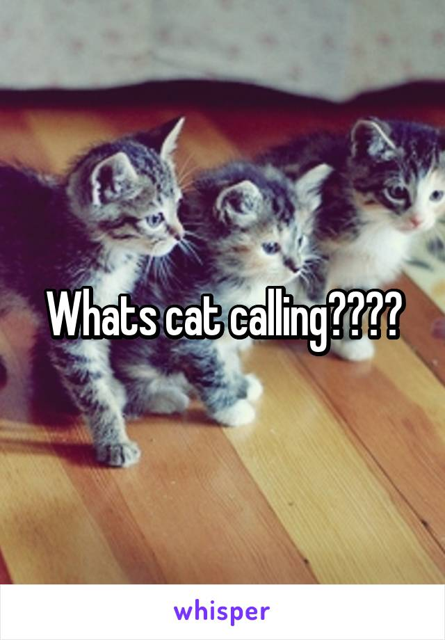 Whats cat calling????