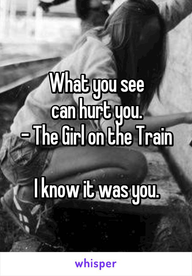 What you see can hurt you. - The Girl on the Train  I know it was you.