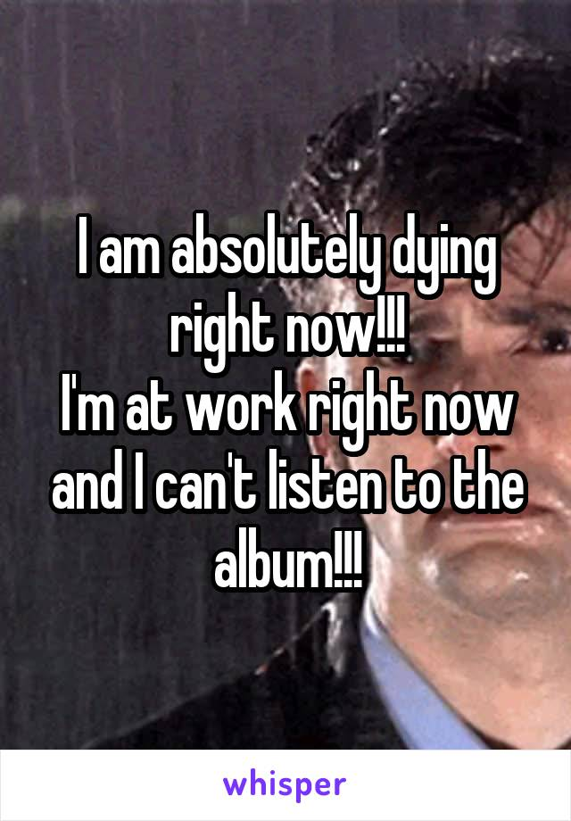 I am absolutely dying right now!!! I'm at work right now and I can't listen to the album!!!