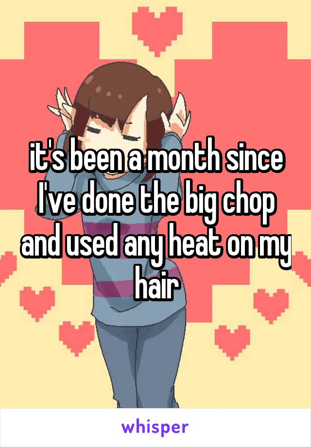 it's been a month since I've done the big chop and used any heat on my hair