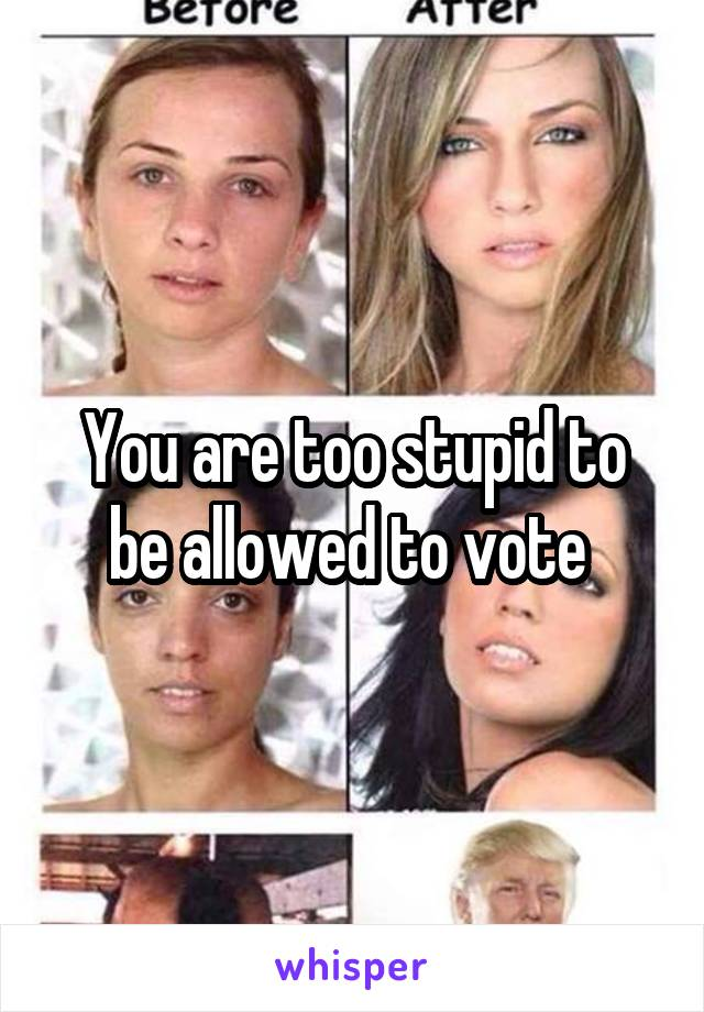 You are too stupid to be allowed to vote
