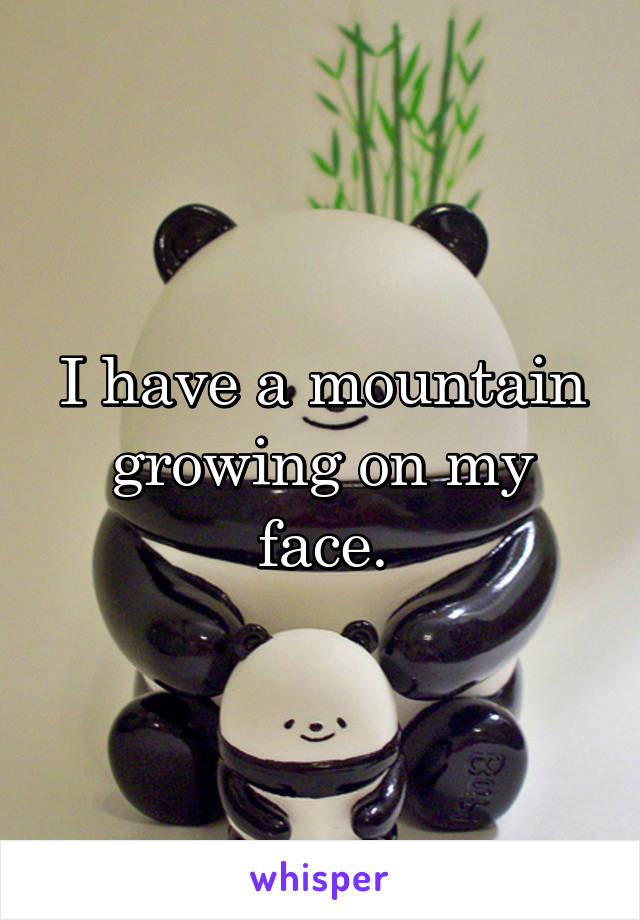 I have a mountain growing on my face.
