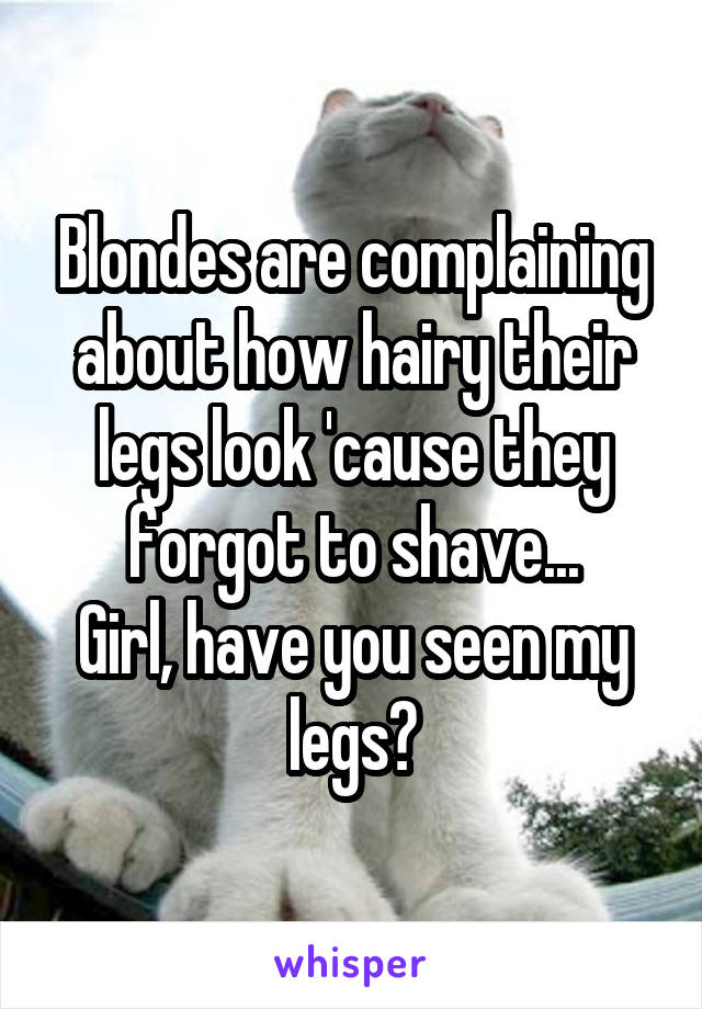 Blondes are complaining about how hairy their legs look 'cause they forgot to shave... Girl, have you seen my legs?