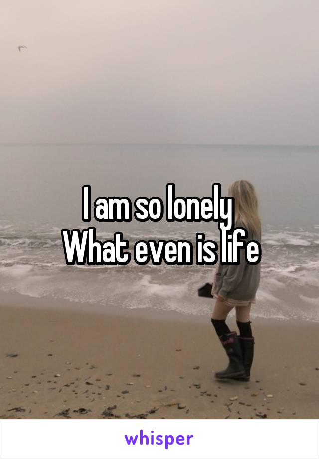 I am so lonely  What even is life