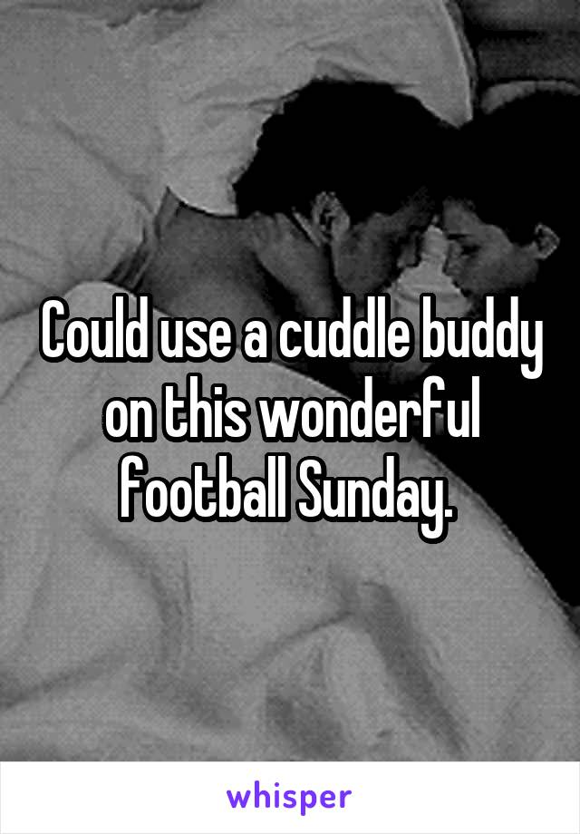 Could use a cuddle buddy on this wonderful football Sunday.