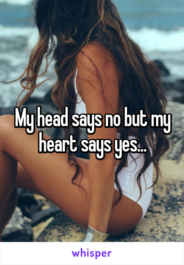 My head says no but my heart says yes...