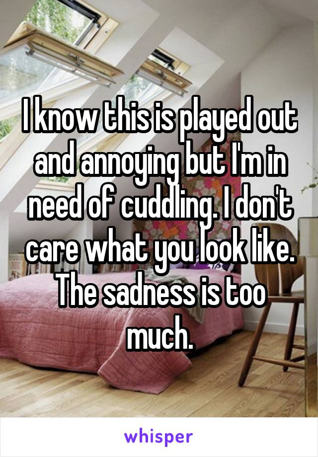 I know this is played out and annoying but I'm in need of cuddling. I don't care what you look like. The sadness is too much.