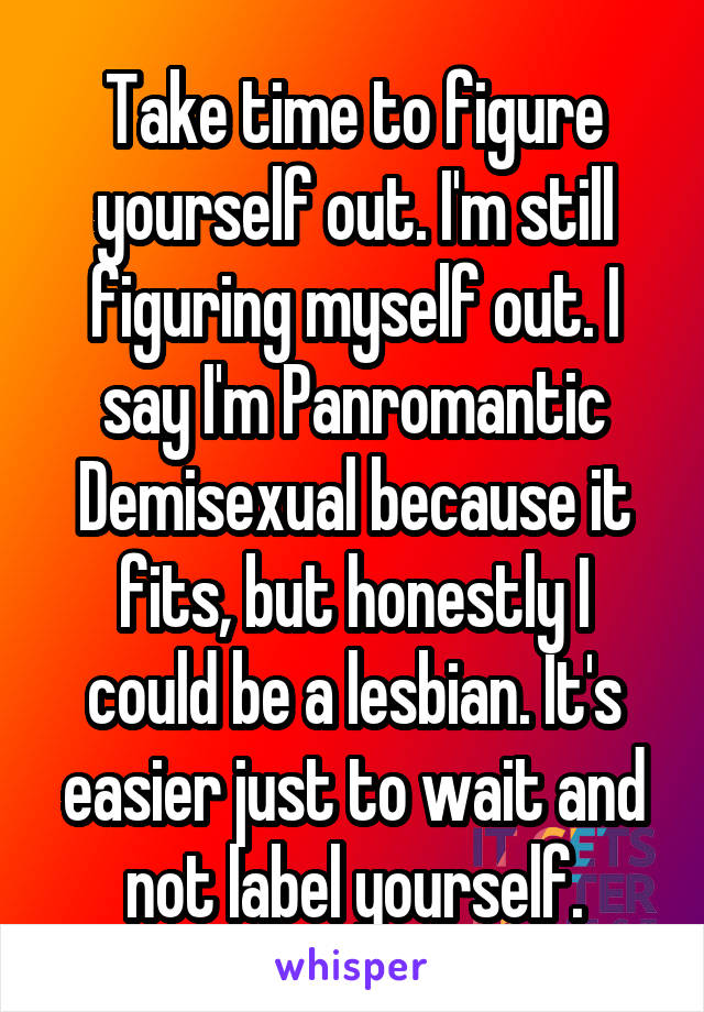 Take time to figure yourself out. I'm still figuring myself out. I say I'm Panromantic Demisexual because it fits, but honestly I could be a lesbian. It's easier just to wait and not label yourself.
