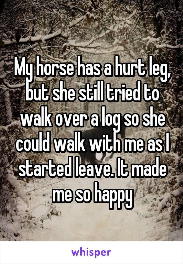 My horse has a hurt leg, but she still tried to walk over a log so she could walk with me as I started leave. It made me so happy