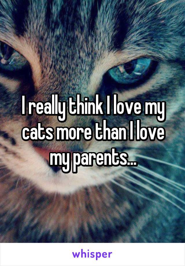 I really think I love my cats more than I love my parents...