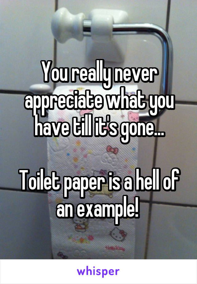You really never appreciate what you have till it's gone...  Toilet paper is a hell of an example!