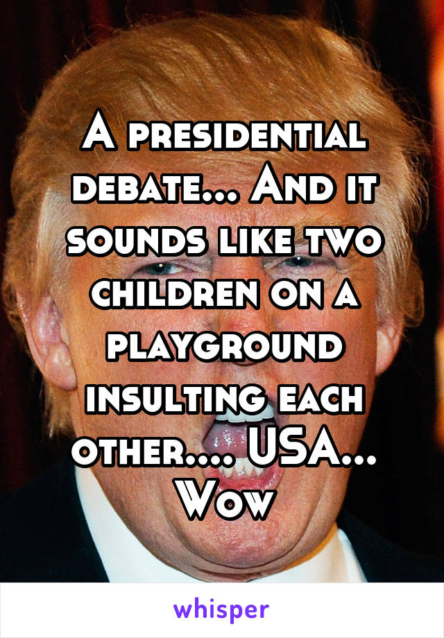 A presidential debate... And it sounds like two children on a playground insulting each other.... USA... Wow