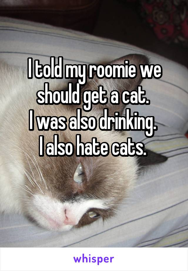 I told my roomie we should get a cat.  I was also drinking.  I also hate cats.