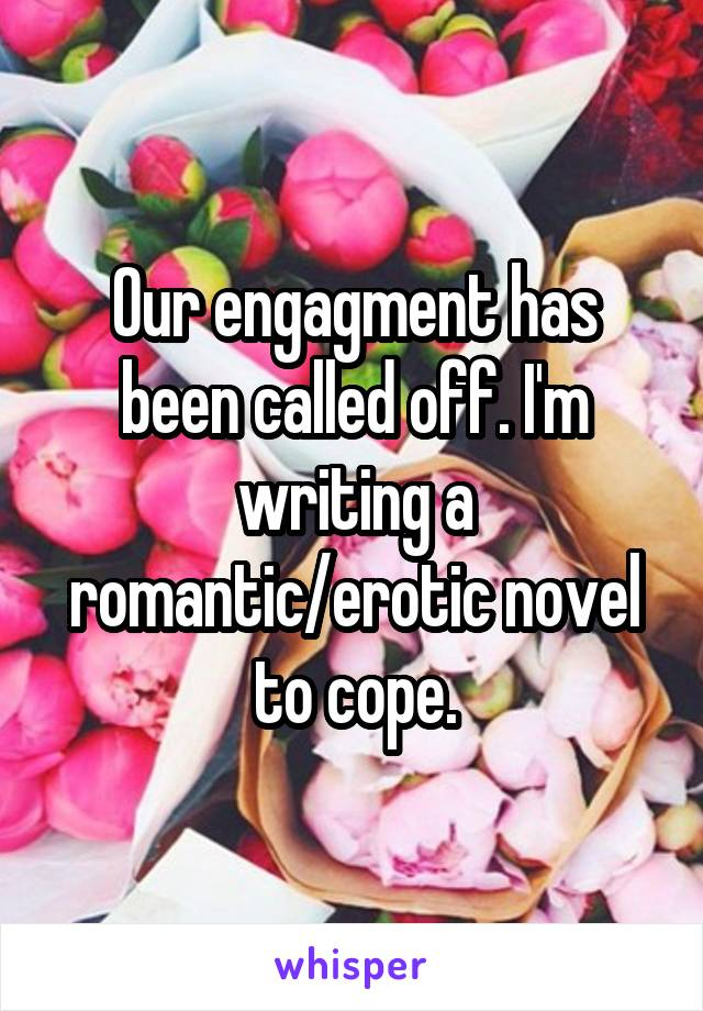 Our engagment has been called off. I'm writing a romantic/erotic novel to cope.
