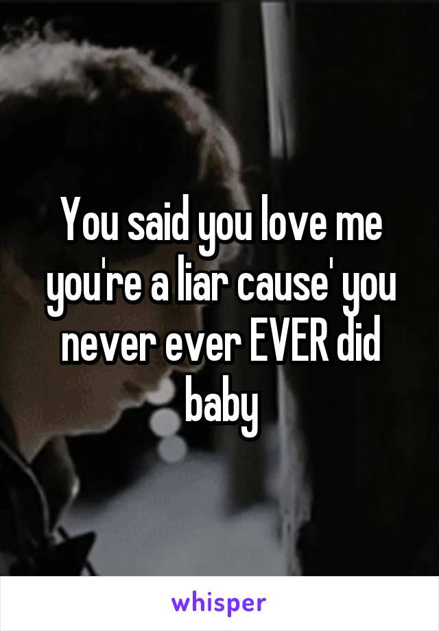 You said you love me you're a liar cause' you never ever EVER did baby