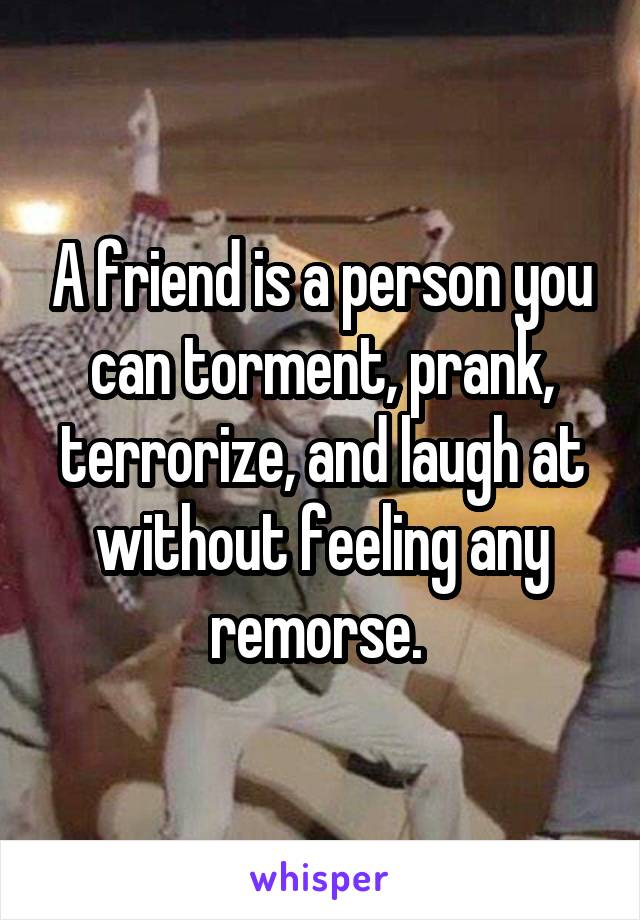 A friend is a person you can torment, prank, terrorize, and laugh at without feeling any remorse.