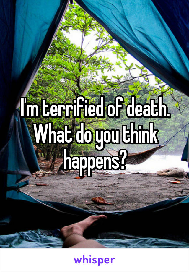 I'm terrified of death. What do you think happens?