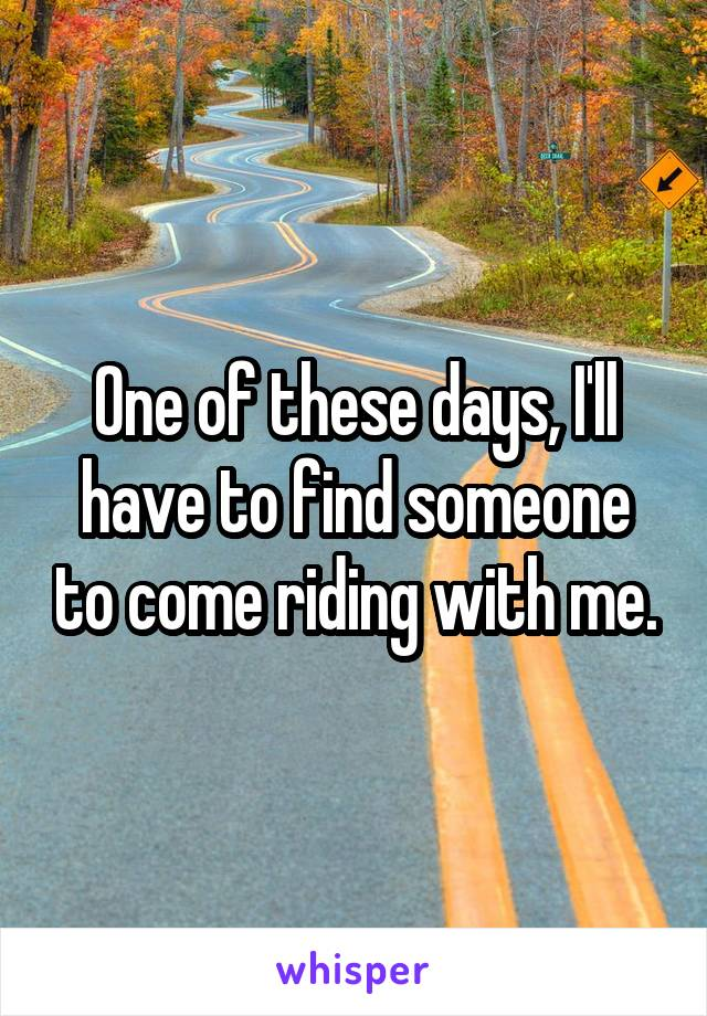 One of these days, I'll have to find someone to come riding with me.