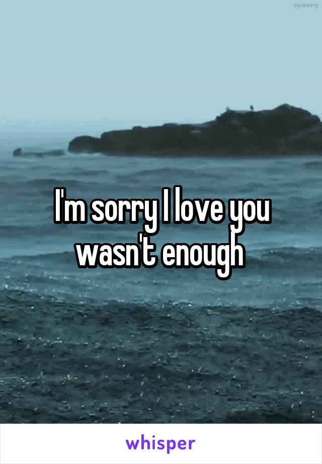 I'm sorry I love you wasn't enough