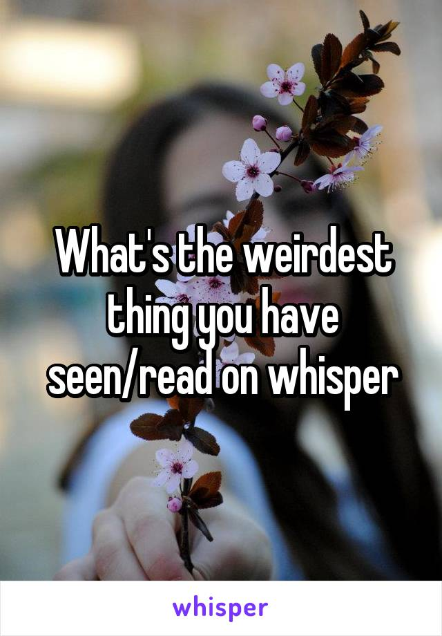 What's the weirdest thing you have seen/read on whisper
