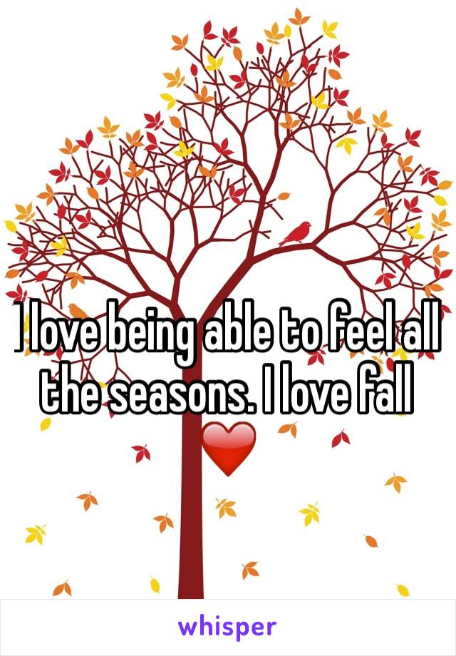 I love being able to feel all the seasons. I love fall ❤️