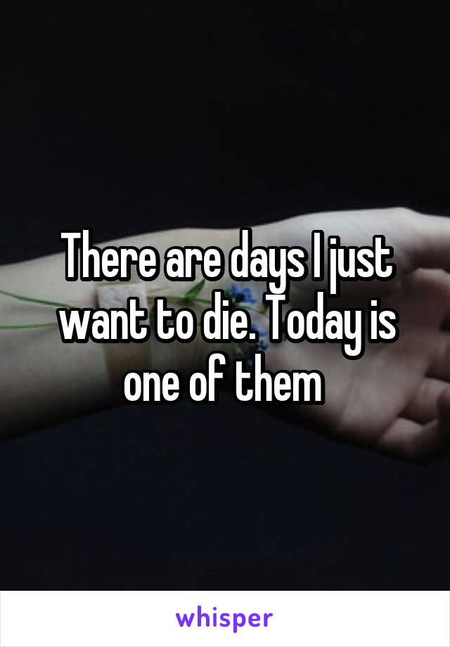 There are days I just want to die. Today is one of them