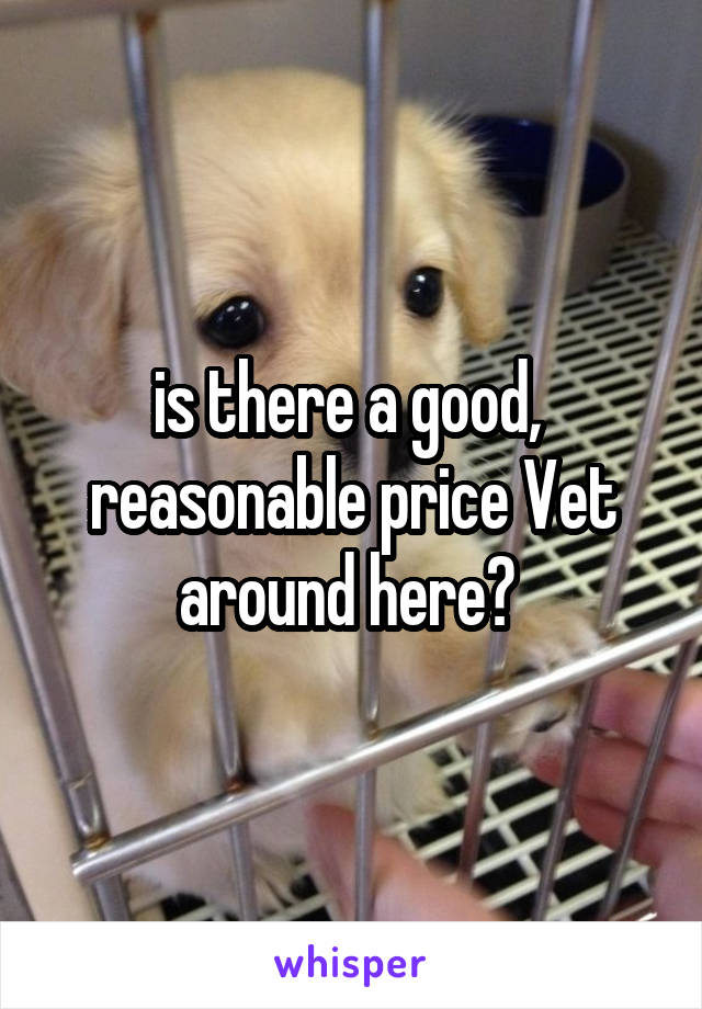 is there a good,  reasonable price Vet around here?