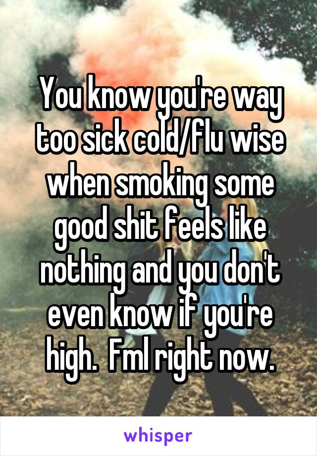 You know you're way too sick cold/flu wise when smoking some good shit feels like nothing and you don't even know if you're high.  Fml right now.