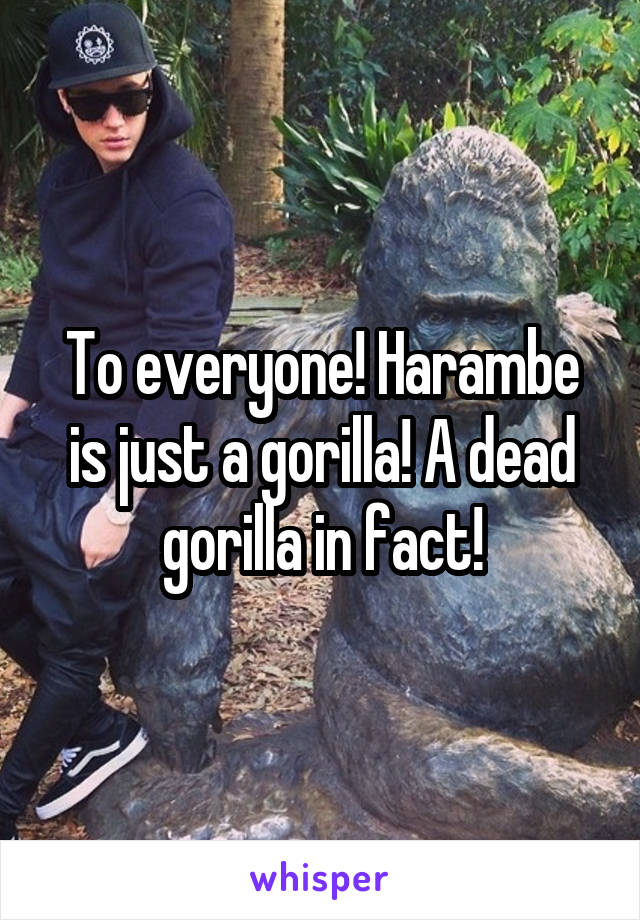 To everyone! Harambe is just a gorilla! A dead gorilla in fact!