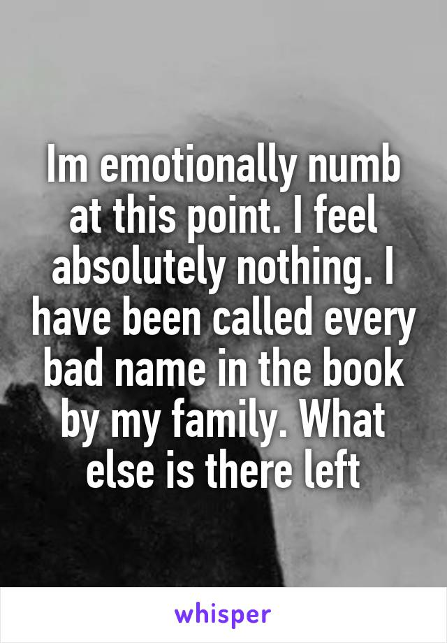 Im emotionally numb at this point. I feel absolutely nothing. I have been called every bad name in the book by my family. What else is there left