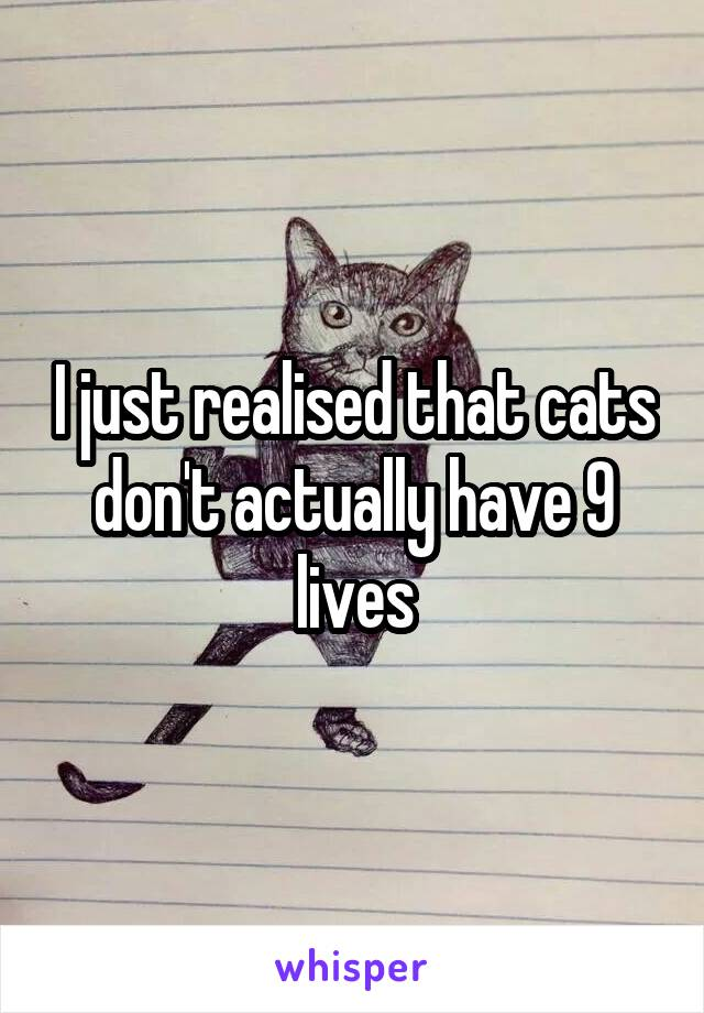 I just realised that cats don't actually have 9 lives
