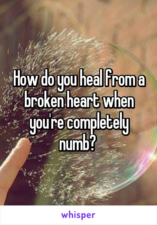 How do you heal from a broken heart when you're completely numb?