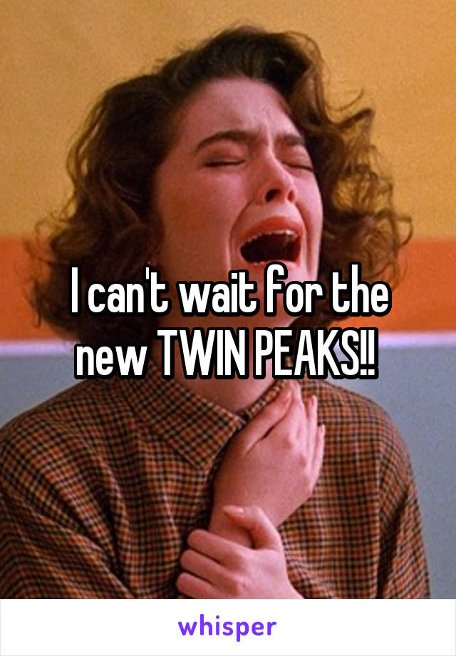 I can't wait for the new TWIN PEAKS!!