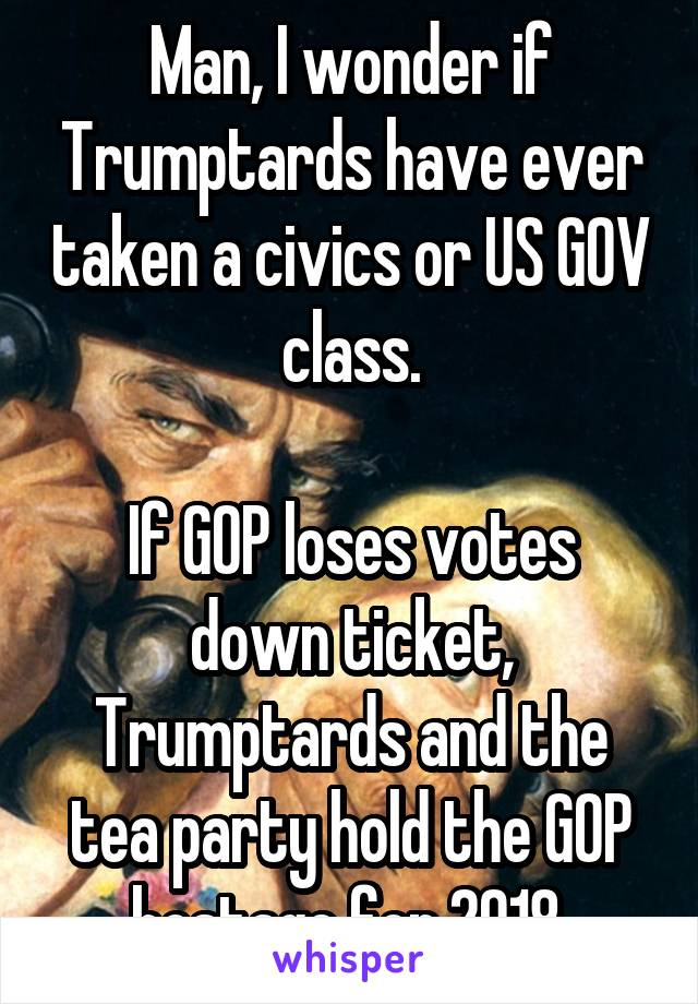 Man, I wonder if Trumptards have ever taken a civics or US GOV class.  If GOP loses votes down ticket, Trumptards and the tea party hold the GOP hostage for 2018.