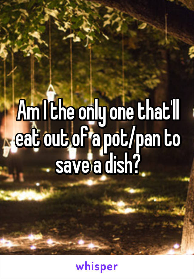 Am I the only one that'll eat out of a pot/pan to save a dish?