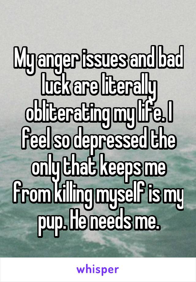 My anger issues and bad luck are literally obliterating my life. I feel so depressed the only that keeps me from killing myself is my pup. He needs me.