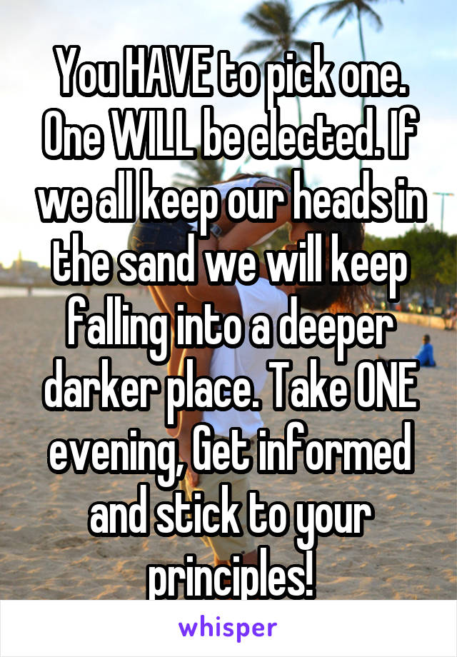 You HAVE to pick one. One WILL be elected. If we all keep our heads in the sand we will keep falling into a deeper darker place. Take ONE evening, Get informed and stick to your principles!
