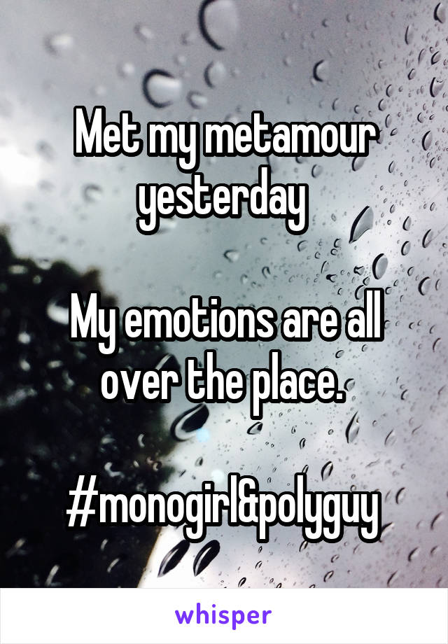 Met my metamour yesterday   My emotions are all over the place.   #monogirl&polyguy
