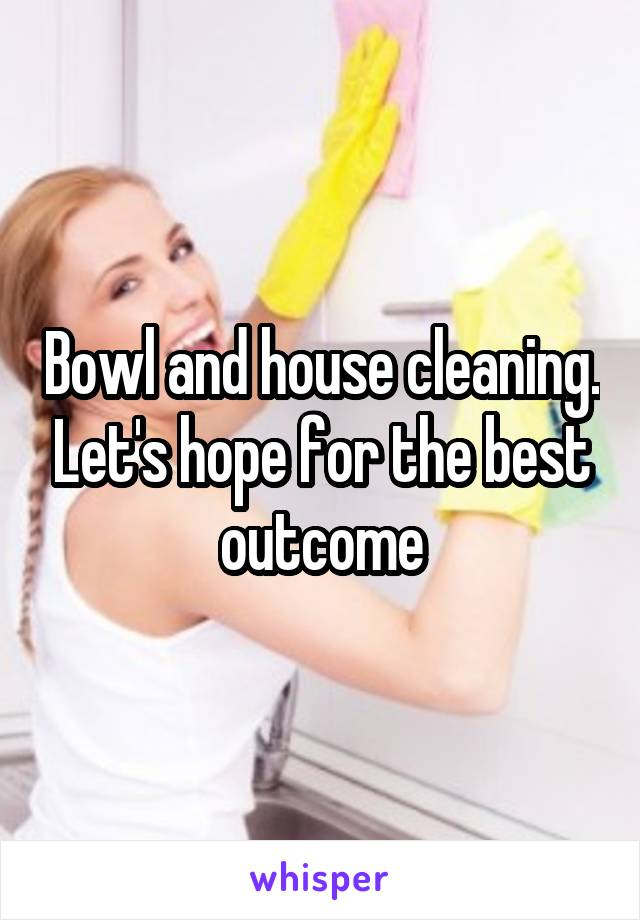 Bowl and house cleaning. Let's hope for the best outcome