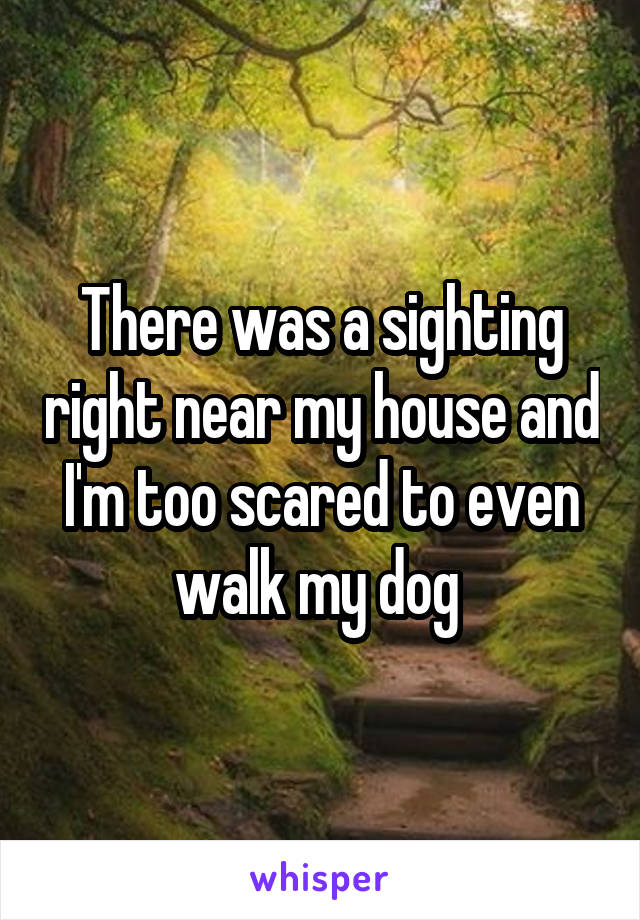 There was a sighting right near my house and I'm too scared to even walk my dog