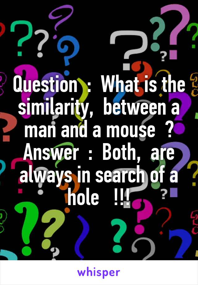 Question  :  What is the similarity,  between a man and a mouse  ? Answer  :  Both,  are always in search of a hole   !!!