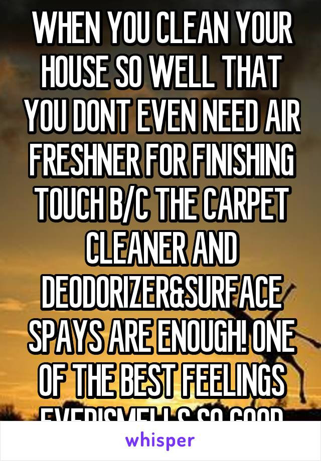 WHEN YOU CLEAN YOUR HOUSE SO WELL THAT YOU DONT EVEN NEED AIR FRESHNER FOR FINISHING TOUCH B/C THE CARPET CLEANER AND DEODORIZER&SURFACE SPAYS ARE ENOUGH! ONE OF THE BEST FEELINGS EVER!SMELLS SO GOOD