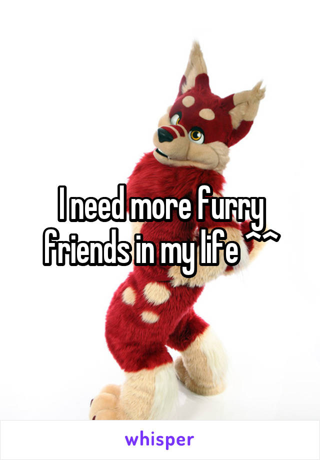 I need more furry friends in my life ^^