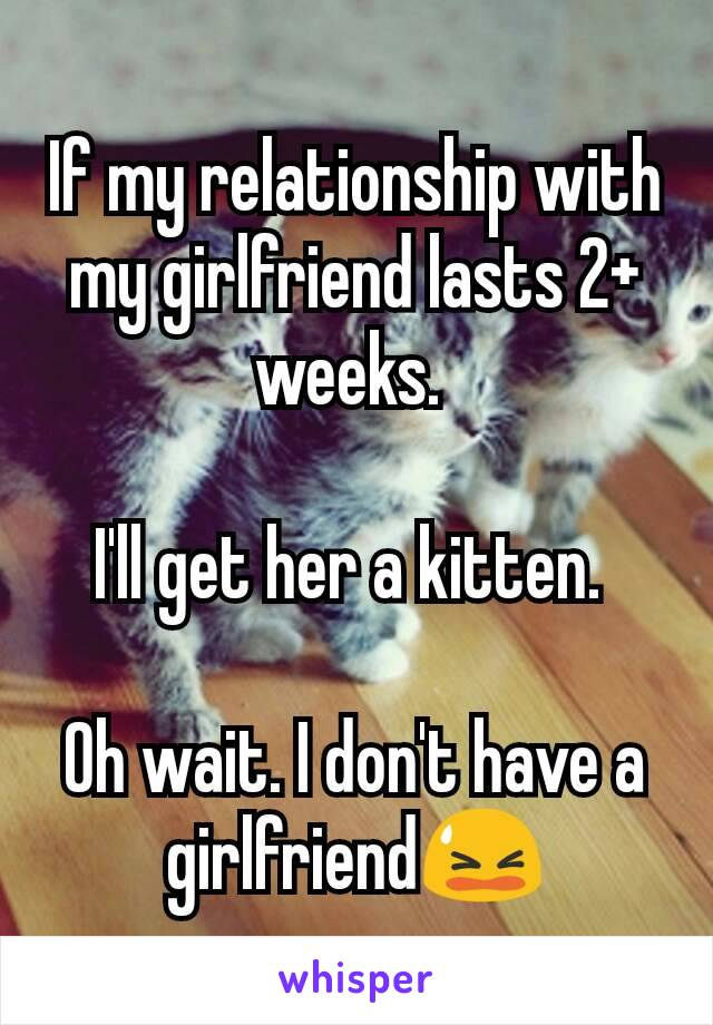 If my relationship with my girlfriend lasts 2+ weeks.   I'll get her a kitten.   Oh wait. I don't have a girlfriend😫