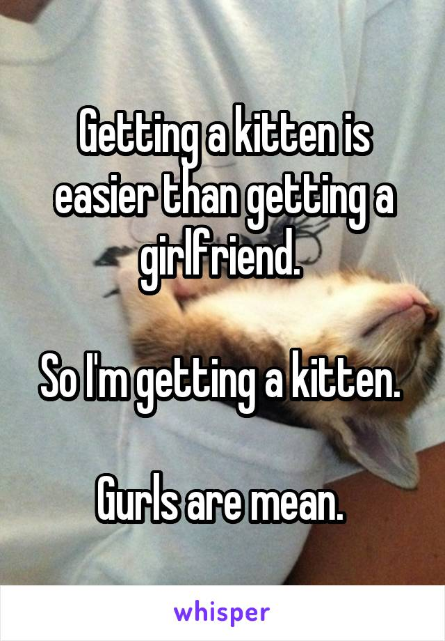 Getting a kitten is easier than getting a girlfriend.   So I'm getting a kitten.   Gurls are mean.