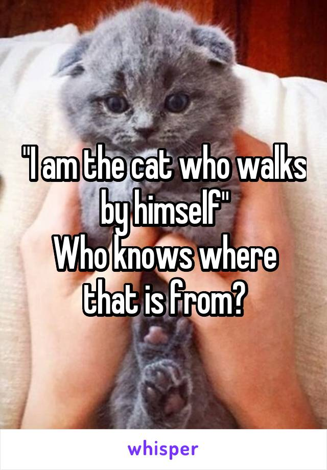 """""""I am the cat who walks by himself"""" Who knows where that is from?"""