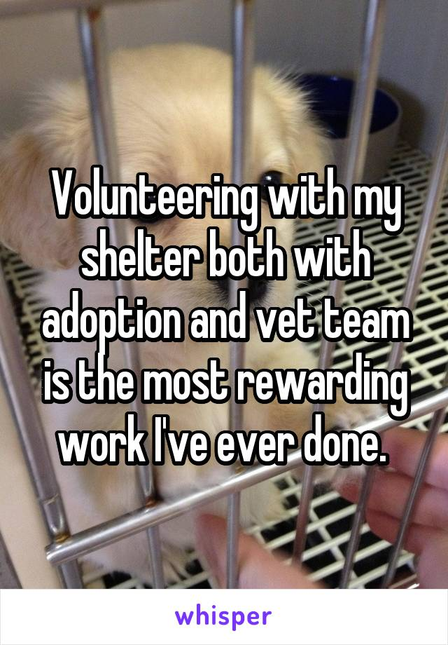 Volunteering with my shelter both with adoption and vet team is the most rewarding work I've ever done.